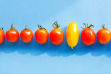 group of red tomatoes and one yellow tomato on a blue background. abstract vision be different, unique personality or standing out from the crowd, leadership quality  - 171876771