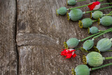poppy heads on wooden surface