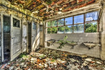 Ruined toilets in an abandoned asylum