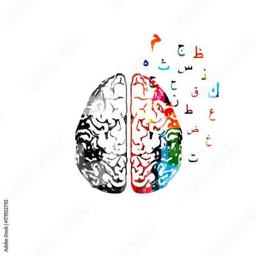 Colorful human brain with Arabic Islamic calligraphy symbols isolated vector illustration © abstract