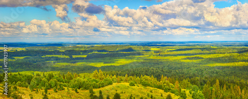 Foto op Plexiglas Panoramafoto s Coniferous forest and meadows. Panorama