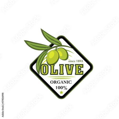 Green olive branch icon for food label design
