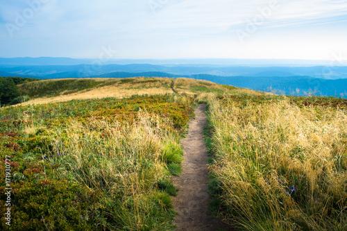 Szlak w Bieszczadach, bukowe Bardo, widok w stronę Mucznego