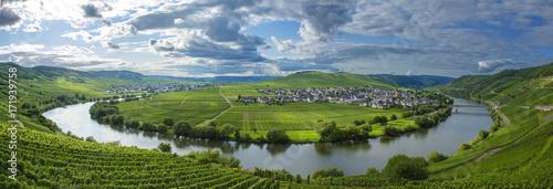 Papiers peints Photos panoramiques Panorama vallée de la Moselle et le village de Trittenheim