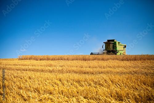 Fotobehang Trekker Moisson du blé en été