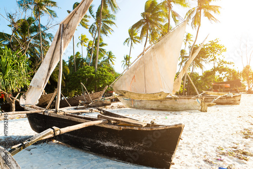 Poster Schip Primive wooden ethnic african boats with masts at a sandy beach, palms nearby