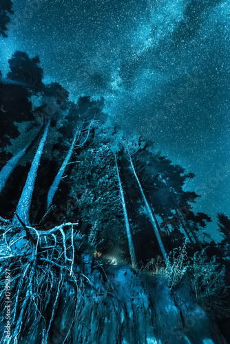Deurstickers Groen blauw night forest landscape on the bank under a sky with stars and Milky Way