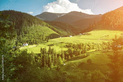 Fotobehang Lente Scenic mountain landscape, summer green meadow
