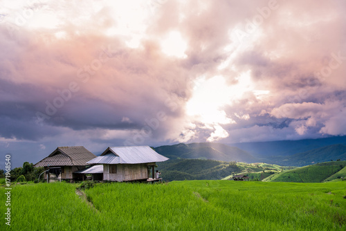 Foto op Aluminium Rijstvelden man sitting on terrace rice field and enjoying beautiful sky , light down , twilight sky