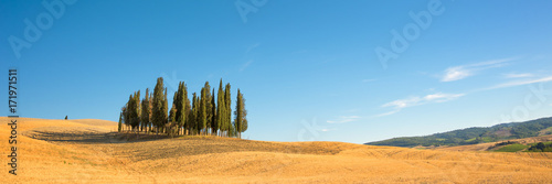 Foto op Plexiglas Panoramafoto s Beautiful typical tuscan panorama with cypress trees in a field in summer, Val d'Orcia, Tuscany, Italy