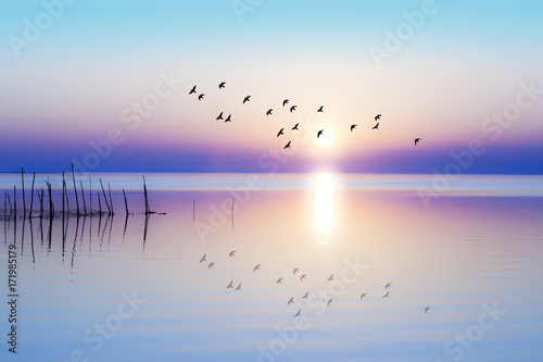 In de dag Ochtendgloren amanecer sobre el mar en calma