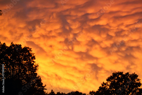Foto op Plexiglas Oranje eclat Beautiful, Rare Mammatus Clouds Burn with a Sunset after a Storm in the Midwest during Summer