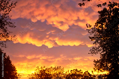 Staande foto Oranje eclat Nature Amazes with Rare Mammatus Clouds after a Storm in the Midwest during Summer