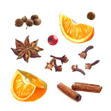 Oranges and winter spices isolated on white watercolor illustration  - 171998957