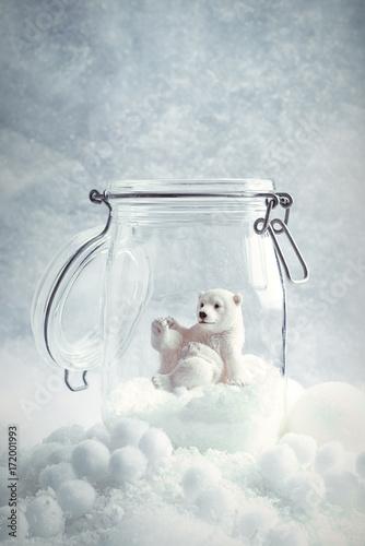 Aluminium Ijsbeer Polar Bear Snowglobe