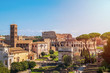 View of Colosseum and Roman Forum from Palatine Hill in Rome, Italy