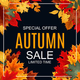 Abstract Vector Illustration Autumn Sale Background with Falling - 172002516