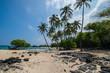 Makalawena Beach Palms, Hawaii