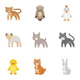 Farm, zoo, ecology and other web icon in cartoon style.Marsupial, Australia, nature icons in set collection.