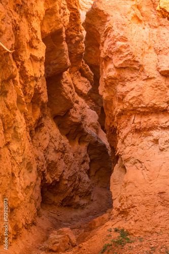 Fotobehang Koraal Bryce Canyon National Park, Utah, Hoodoos, Spires Pinnacles, Red Rock