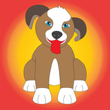 Cute dog isolated with multicolored background.