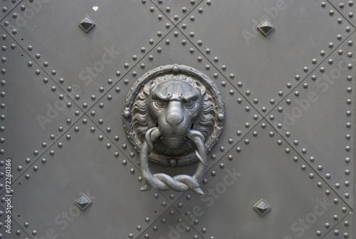 löwe türknauf tür hintergrund Poster