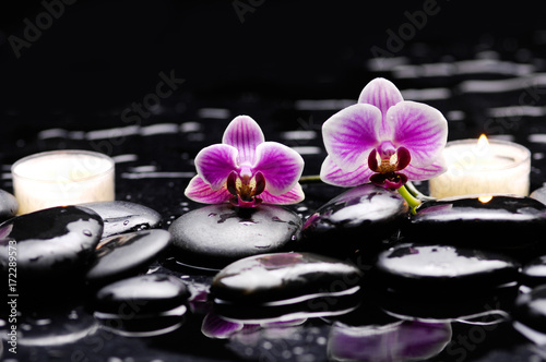 Poster Spa still life with two orchid and two candle on black stones