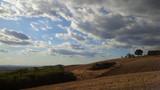 campo dorato con casolare e grandi nuvole - 172294796