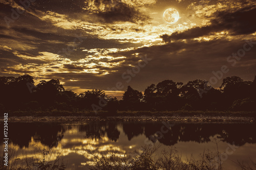 Foto op Aluminium Chocoladebruin Sky with many star and full moon above silhouettes of trees and lake. Vintage tone.
