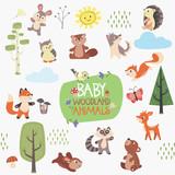 Baby Forest Animals