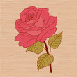 Red rose cartoon style on wooden background