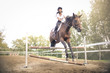 Girl riding a horse and jumping and obstacle - 172370964