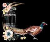 Watercolor pheasant card. - 172390108