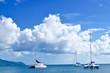 Catamaran en Martinique