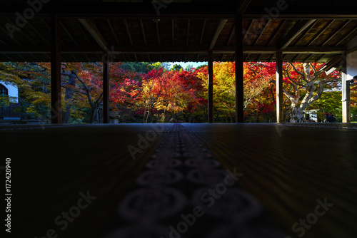 Deurstickers Kyoto 京都 圓光寺の日本庭園の紅葉 その3 Kyoto Autumn Landscape at Enkouji No.5