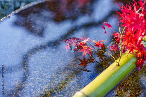 Papiers peints Kyoto 京都 秋の景色 水瓶と紅葉 その1 Kyoto Autumn Landscape No.2