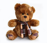 brown toy bear on white background