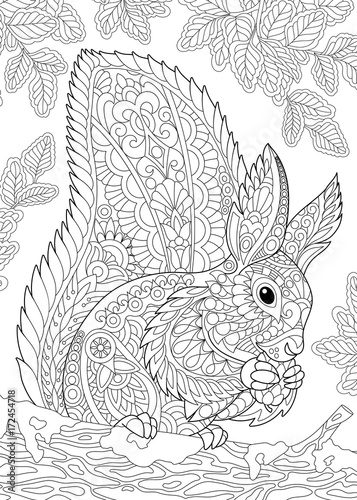 Coloring Page Of Squirrel Eating Pine Cone Freehand Sketch Drawing For Adult Antistress Book