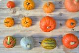 Pumpkins and squashes on wooden board - 172458391