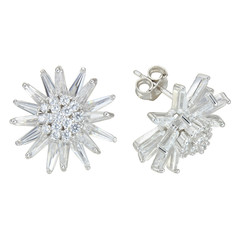 Sterling Silver Earrings isolated on white