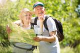 Senior couple hiking  - 172637399