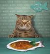 The cat is sitting in front of a plate with fried fish.