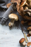 autumn cooking  background;  seasoning forest organic porcini Mushroom; - 172716333