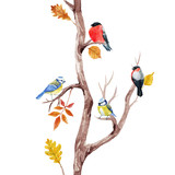 Fall trees and birds vector pattern - 172716931