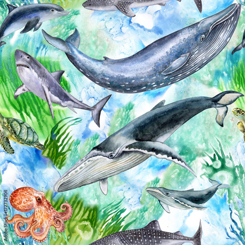 Fototapeta Sea life. A set of sea creatures. The inhabitants of the ocean. Watercolor. Illustration. Wallpaper. Seamless Pattern