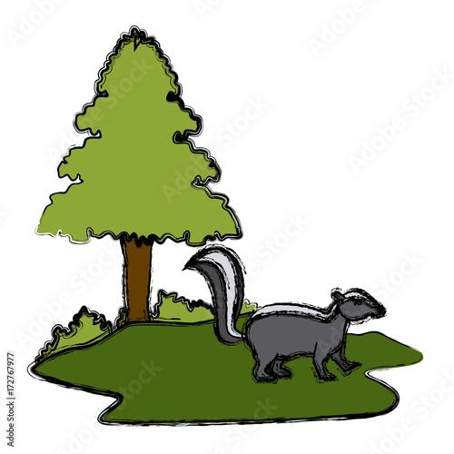 Fotobehang Zoo Skunk animal cartoon icon vector illustration graphic design