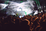 Crowd in a concert - 172786126