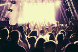 Crowd in a concert - 172786137