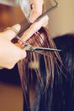 Female hair cutting scissors in a beauty salon - 172786196
