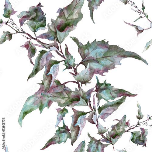Sagebrush tarragon leaves ornament - 172803774
